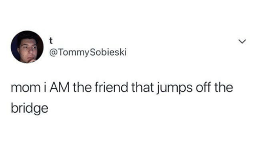 Humans of Tumblr, Mom, and The Bridge: @TommySobieski  mom i AM the friend that jumps off the  bridge