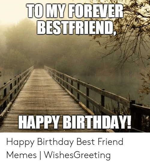 tomy forever bestfriend happy birthday happy birthday best friend memes