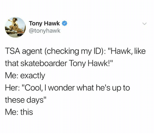 """Dank, Tony Hawk, and Cool: Tony Hawk  @tonyhawk  TSA agent (checking my ID): """"Hawk, like  that skateboarder Tony Hawk!""""  Me: exactly  Her: """"Cool, I wonder what he's up to  these days""""  Me: this"""