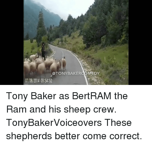 Memes, 🤖, and Ram: @TONYBAKERCOMEDY  07/08/2014 09:54:52 Tony Baker as BertRAM the Ram and his sheep crew. TonyBakerVoiceovers These shepherds better come correct.