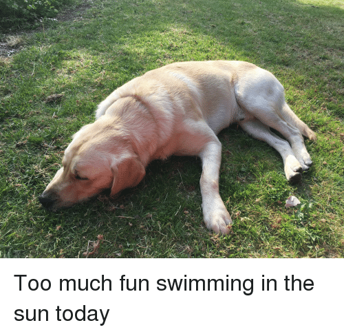 Too Much, Today, and Swimming