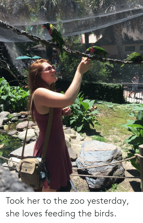 Birds, The Birds, and Her: Took her to the zoo yesterday, she loves feeding the birds.