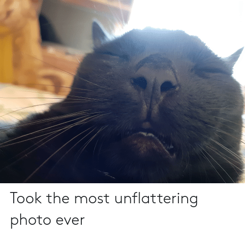 Unflattering: Took the most unflattering photo ever