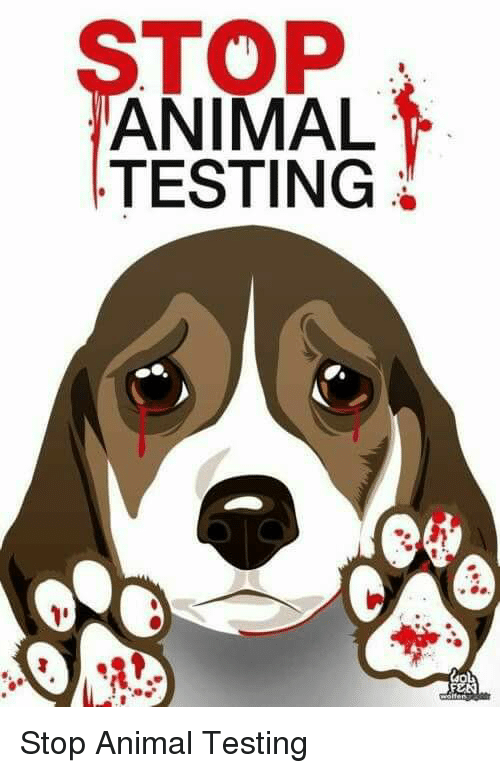 "animal testing 18 He calls animal testing 'taxpayer-funded torture' he calls animal testing ""make a lot of money and fund the animal campaigns to fight back"" after 18."