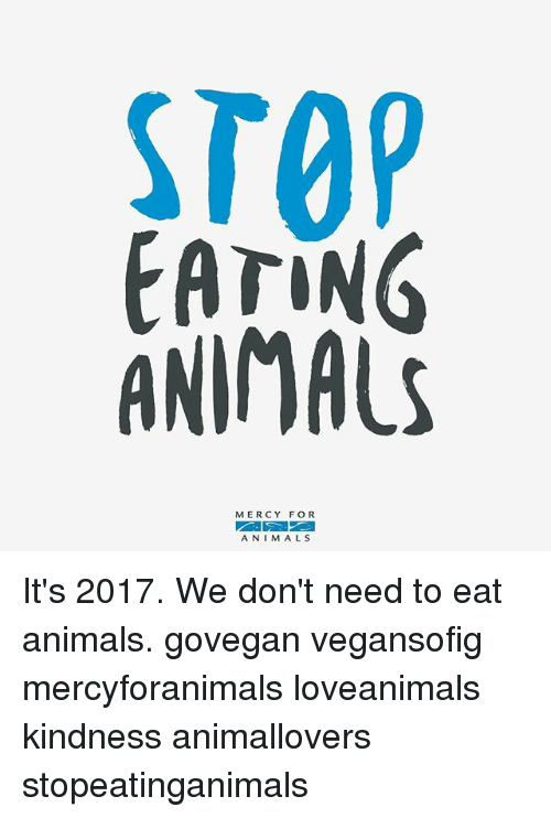 Animals, Memes, and Kindness: TOP  EAriNG  ANIMALS  MERCY FOR  ANIMALS It's 2017. We don't need to eat animals. govegan vegansofig mercyforanimals loveanimals kindness animallovers stopeatinganimals