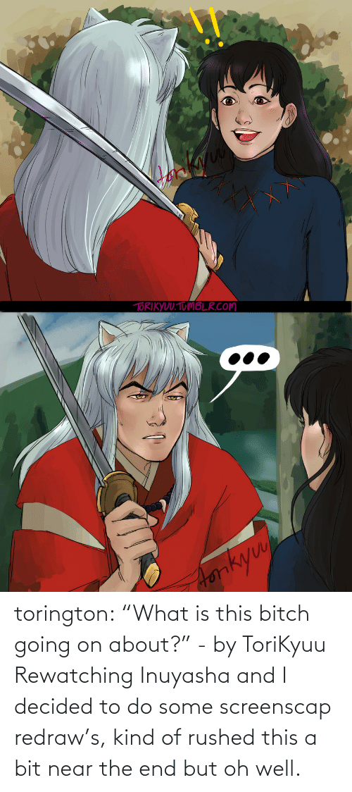 "Kind: torington: ""What is this bitch going on about?"" - by ToriKyuu Rewatching Inuyasha and I decided to do some screenscap redraw's, kind of rushed this a bit near the end but oh well."