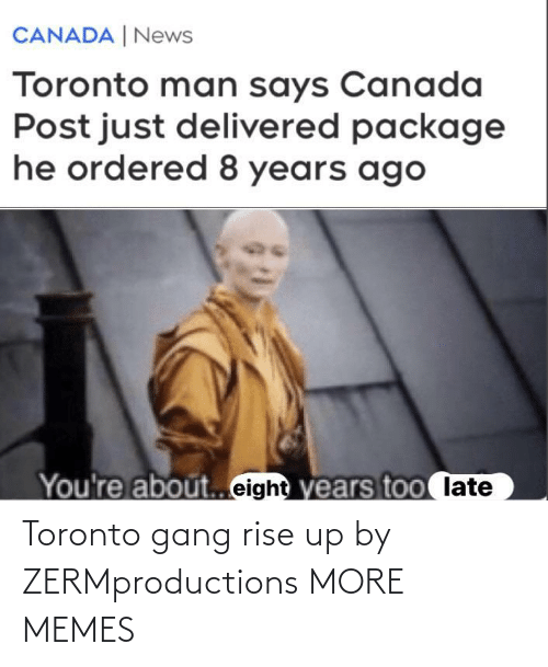 rise up: Toronto gang rise up by ZERMproductions MORE MEMES
