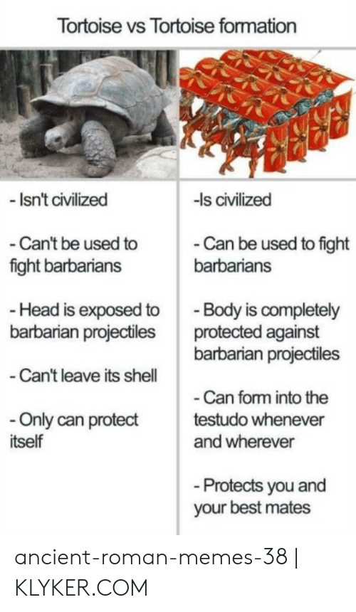 Klyker Com: Tortoise vs Tortoise formation  Isn't civilized  -Is civilized  - Can't be used to  fight barbarians  - Can be used to fight  barbarians  - Body is completely  barbarian projectiles  Head is exposed to  barbarian projectiles protected against  -Can't leave its shell  Can form into the  Only can protecttestudo whenever  tself  and wherever  Protects you and  your best mates ancient-roman-memes-38   KLYKER.COM