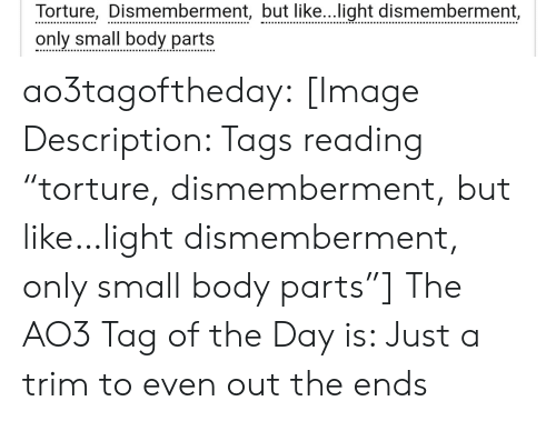 """Target, Tumblr, and Blog: Torture, Dismemberment, but like...light dismemberment,  only small body parts ao3tagoftheday:  [Image Description: Tags reading """"torture, dismemberment, but like…light dismemberment, only small body parts""""]  The AO3 Tag of the Day is: Just a trim to even out the ends"""