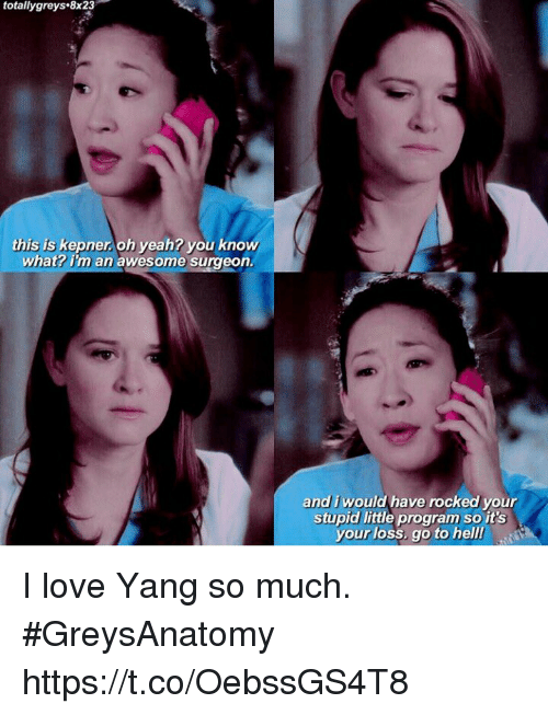 Love, Memes, and Yeah: totallygreys.8x23  this is kepner.oh yeah? you know  what? im an awesome surgeon  and i would have rocked your  stupid little program so it's  your loss, go to hell! I love Yang so much. #GreysAnatomy https://t.co/OebssGS4T8