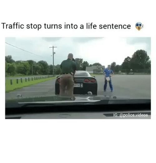 Life, Memes, and Traffic: Traffic stop turns into a life sentence  G apolice videos