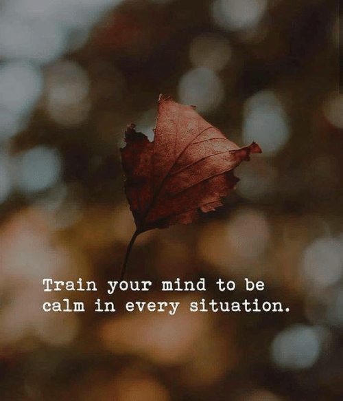 Train, Mind, and Calm: Train your mind to be  calm in every situation.