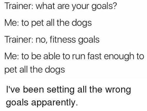 Running Fast: Trainer: what are your goals?  Me: to pet all the dogs  Trainer: no, fitness goals  Me: to be able to run fast enough to  pet all the dogs I've been setting all the wrong goals apparently.