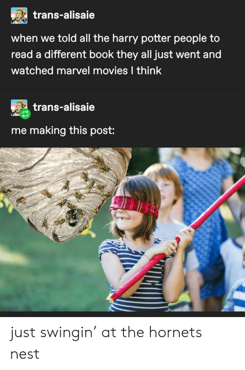 Harry Potter, Movies, and Book: trans-alisaie  when we told all the harry potter people to  read a different book they all just went and  watched marvel movies I think  trans-alisaie  me making this post: just swingin' at the hornets nest