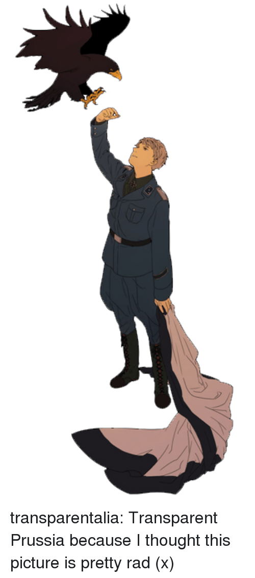 Target, Tumblr, and Blog: transparentalia:  Transparent Prussia because I thought this picture is pretty rad (x)