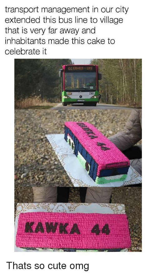 Cute, Omg, and Cake: transport management in our city  extended this bus line to village  that is very far away and  inhabitants made this cake to  celebrate it  2361  KAWKA 44 <p>Thats so cute omg</p>