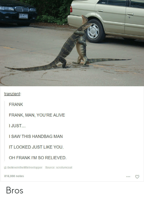 Alive, Saw, and Source: tranzient  FRANK  FRANK, MAN, YOU'RE ALIVE  IJUST..  I SAW THIS HANDBAG MAN  IT LOOKED JUST LIKE YOU.  OH FRANK I'M SO RELIEVED.  ǐbelieveinthelittletreetopper Source: scrotumcoat  816,000 notes Bros