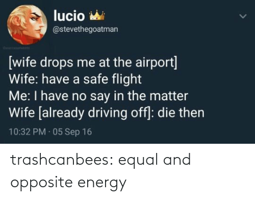 com: trashcanbees:  equal and opposite energy