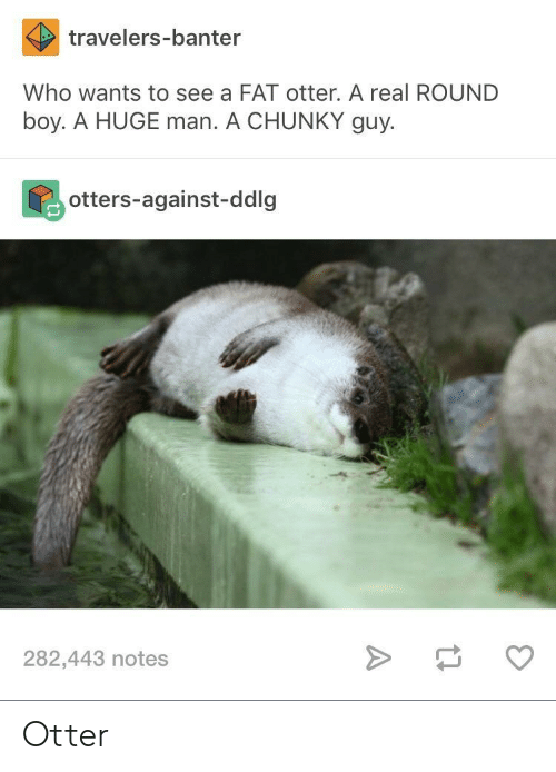 Otters: travelers-banter  Who wants to see a FAT otter. A real ROUND  boy. A HUGE man. A CHUNKY guy.  otters-against-ddlg  282,443 notes Otter