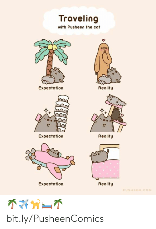 Dank, Reality, and 🤖: Traveling  with Pusheen the cat  Expectation  Reality  Eχpectation  Reality  Expectation  Reality  PUSHEEN.COM 🌴✈️🐈🛏️🌴 bit.ly/PusheenComics