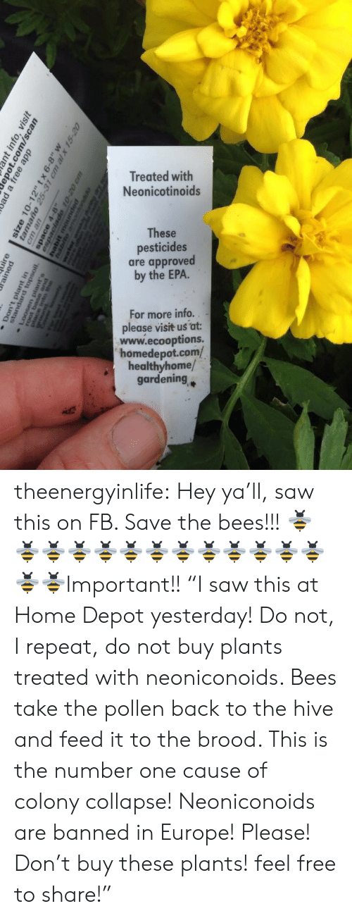 """epa: Treated with  Neonicotinoids  These  pesticides  are approved  by the EPA.  For more info..  please visit us at:  www.ecooptions.  homedepot.com/  healthyhome/  gardening theenergyinlife: Hey ya'll, saw this on FB. Save the bees!!! 🐝🐝🐝🐝🐝🐝🐝🐝🐝🐝🐝🐝🐝🐝🐝Important!! """"I saw this at Home Depot yesterday! Do not, I repeat, do not buy plants treated with neoniconoids. Bees take the pollen back to the hive and feed it to the brood.  This is the number one cause of colony collapse! Neoniconoids are banned in Europe! Please! Don't buy these plants! feel free to share!"""""""