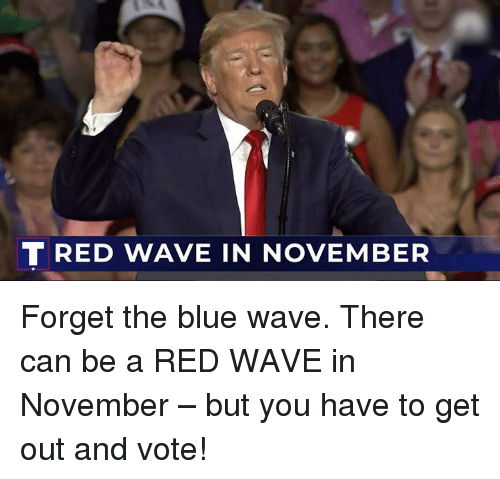 Blue, Red, and Can: TRED WAVE IN NOVEMBER Forget the blue wave. There can be a RED WAVE in November – but you have to get out and vote!