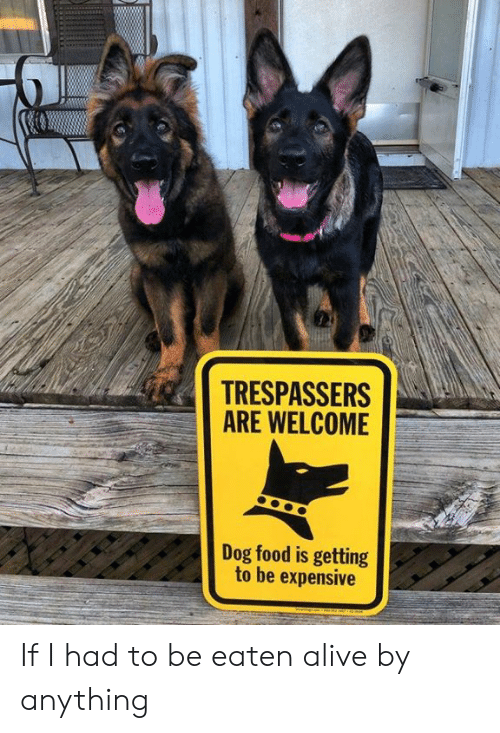 Alive, Dank, and Food: TRESPASSERS  ARE WELCOME  Dog food is getting  to be expensive If I had to be eaten alive by anything