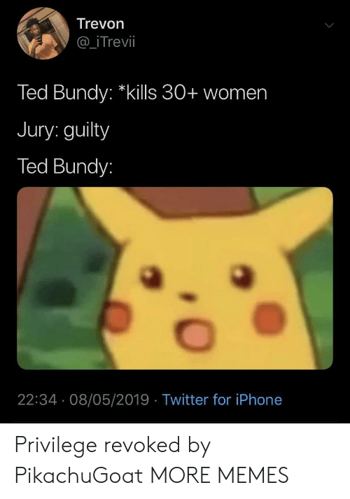 "Dank, Iphone, and Memes: Trevon  @_iTrevil  Ted Bundy: ""kills 30+ women  Jury: guilty  Ted Bundy:  22:34 08/05/2019 Twitter for iPhone Privilege revoked by PikachuGoat MORE MEMES"
