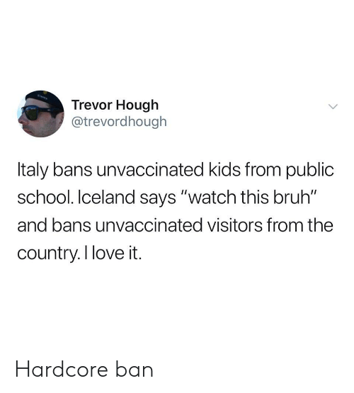 """Bruh, Love, and School: Trevor Hough  @trevordhough  Italy bans unvaccinated kids from public  school. Iceland says """"watch this bruh""""  and bans unvaccinated visitors from the  country.I love it. Hardcore ban"""