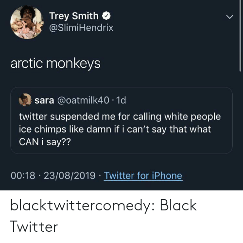 monkeys: Trey Smith  @SlimiHendrix  arctic monkeys  sara @oatmilk40 1d  twitter suspended me for calling white people  ice chimps like damn if i can't say that what  CAN i say??  00:18 23/08/2019 Twitter for iPhone blacktwittercomedy:  Black Twitter