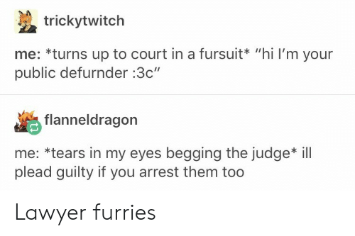 "Lawyer, Judge, and Furries: trickytwitch  me: *turns up to court in a fursuit* ""hi I'm your  public defurnder :3c""  flanneldragon  me: *tears in my eyes begging the judge* ill  plead guilty if you arrest them too Lawyer furries"