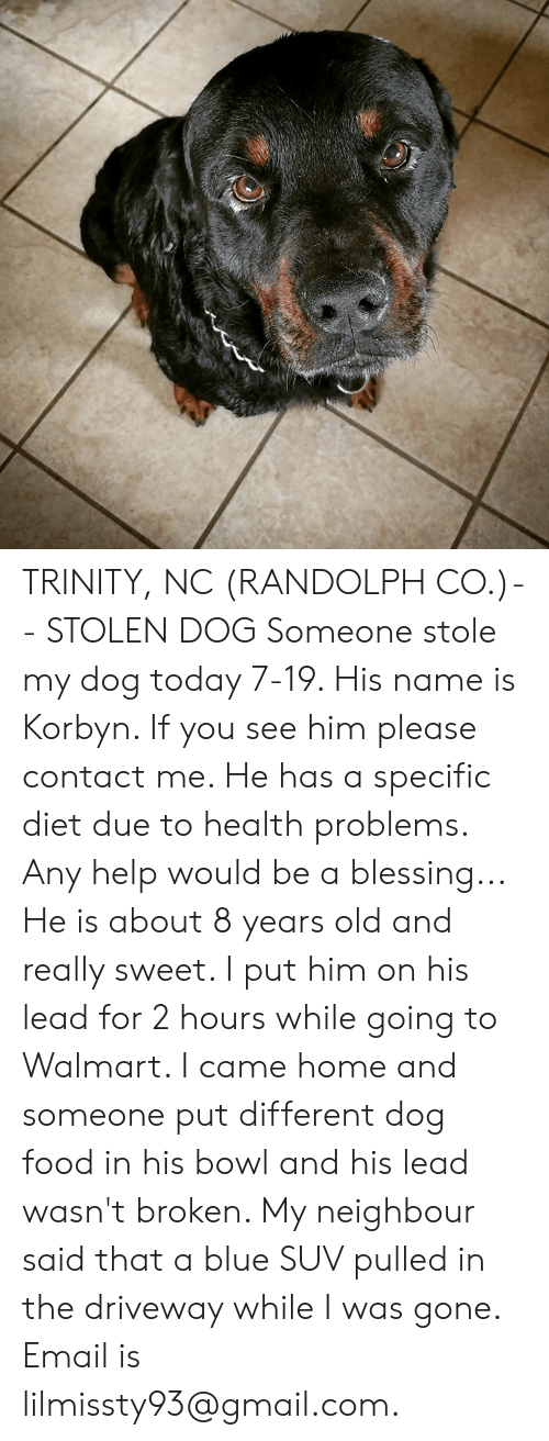 Food, Memes, and Walmart: TRINITY, NC (RANDOLPH CO.)-- STOLEN DOG  Someone stole my dog today 7-19. His name is Korbyn. If you see him please contact me. He has a specific diet due to health problems. Any help would be a blessing... He is about 8 years old and really sweet. I put him on his lead for 2 hours while going to Walmart. I came home and someone put different dog food in his bowl and his lead wasn't broken. My neighbour said that a blue SUV pulled in the driveway while I was gone. Email is lilmissty93@gmail.com.