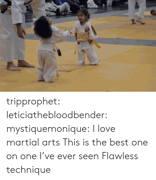 martial arts: tripprophet: leticiathebloodbender:  mystiquemonique: I love martial arts  This is the best one on one I've ever seen   Flawless technique