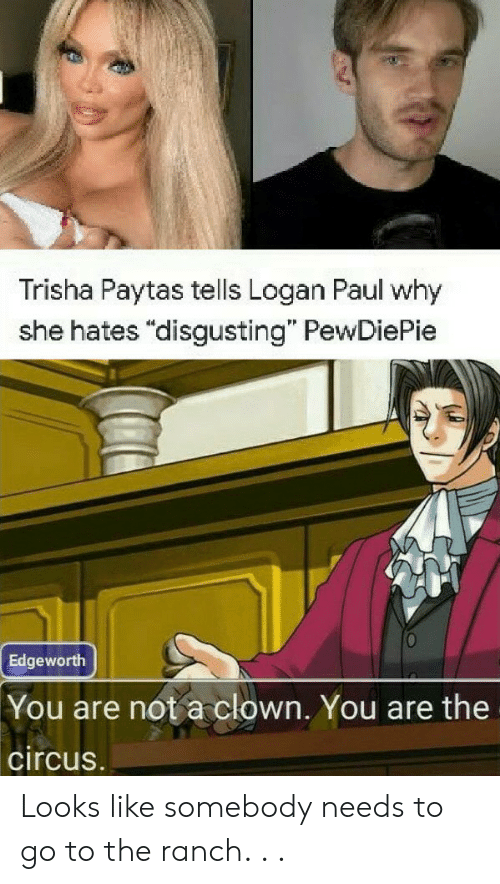 """Trisha, Paul, and Trisha Paytas: Trisha Paytas tells Logan Paul why  she hates """"disgusting"""" PewDiePie  Edgeworth  You are not a clown. You are the  circus. Looks like somebody needs to go to the ranch. . ."""
