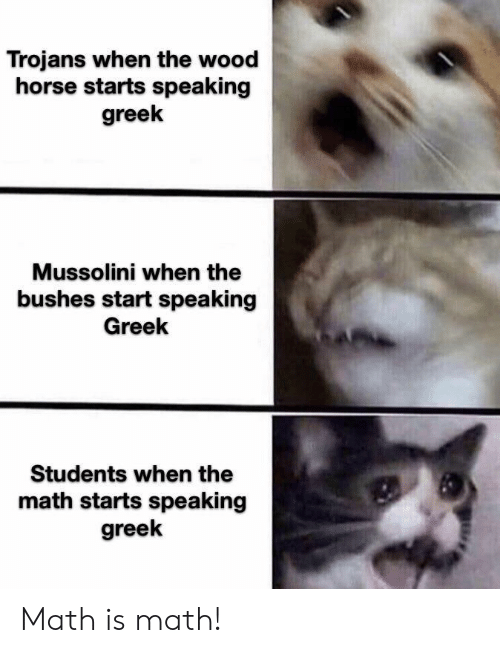 Horse, Math, and Greek: Trojans when the wood  horse starts speaking  greek  Mussolini when the  bushes start speaking  Greek  Students when the  math starts speaking  greek Math is math!