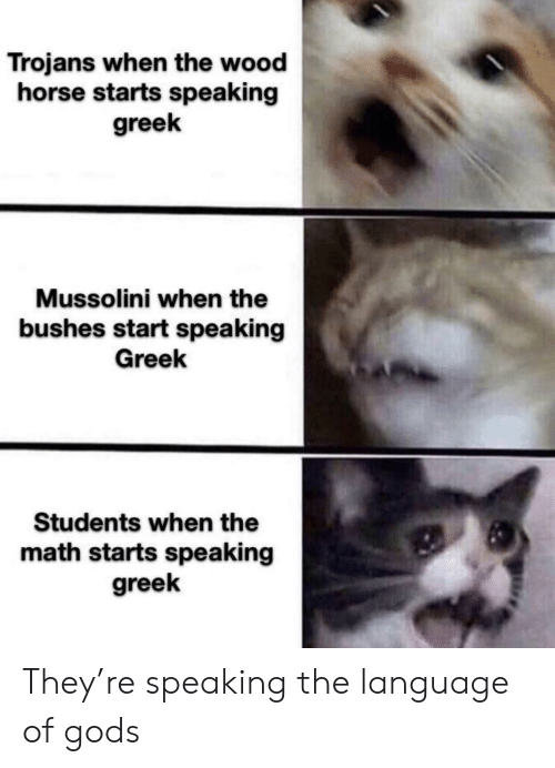Horse, Math, and Greek: Trojans when the wood  horse starts speaking  greek  Mussolini when the  bushes start speaking  Greek  Students when the  math starts speaking  greek They're speaking the language of gods