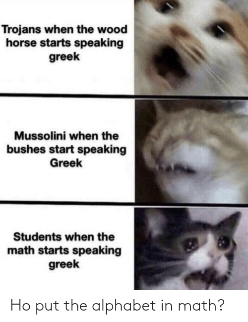 Greek: Trojans when the wood  horse starts speaking  greek  Mussolini when the  bushes start speaking  Greek  Students when the  math starts speaking  greek Ho put the alphabet in math?