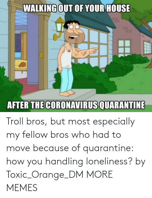 Orange: Troll bros, but most especially my fellow bros who had to move because of quarantine: how you handling loneliness? by Toxic_Orange_DM MORE MEMES