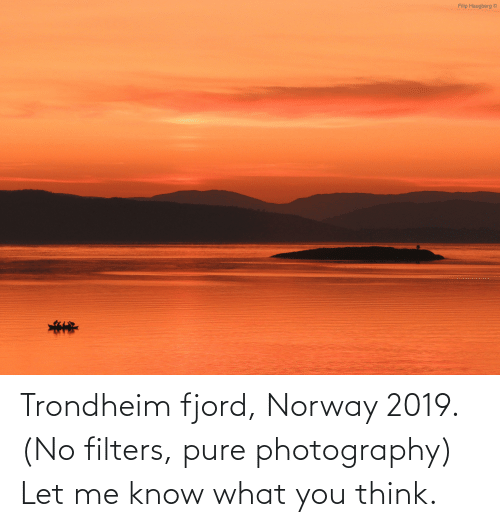 let me: Trondheim fjord, Norway 2019. (No filters, pure photography) Let me know what you think.