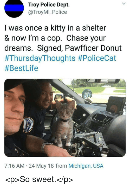 Police, Chase, and Michigan: Troy Police Dept.  @TroyMI_Police  I was once a kitty in a shelter  & now I'm a cop. Chase your  dreams. Signed, Pawfficer Donut  #ThursdayThoughts #PoliceCat  #BestLife  7:16 AM 24 May 18 from Michigan, USA <p>So sweet.</p>