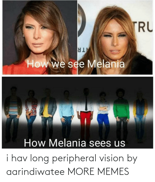 Dank, Memes, and Target: TRU  TR  How we see Melania  How Melania sees us i hav long peripheral vision by aarindiwatee MORE MEMES