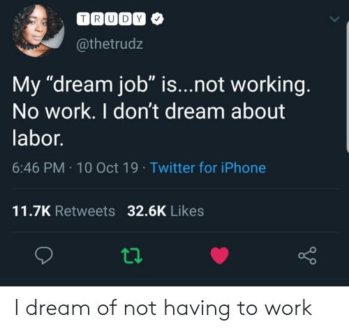 "not working: TRUDY  @thetrudz  My ""dream job"" is...not working.  No work. I don't dream about  labor.  6:46 PM 10 Oct 19 Twitter for iPhone  11.7K Retweets 32.6K Likes I dream of not having to work"