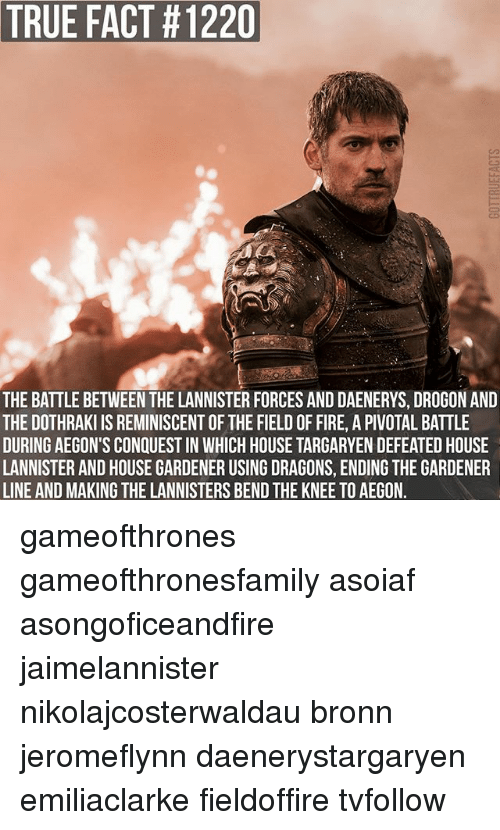 Fire, Memes, and True: TRUE FACT #1220  THE BATTLE BETWEEN THE LANNISTER FORCES AND DAENERYS, DROGON AND  THE DOTHRAKI IS REMINISCENT OF THE FIELD OF FIRE, A PIVOTAL BATTLE  DURING AEGON'S CONQUEST IN WHICH HOUSE TARGARYEN DEFEATED HOUSE  LANNISTER AND HOUSE GARDENER USING DRAGONS, ENDING THE GARDENER  LINE AND MAKING THE LANNISTERS BEND THE KNEE TO AEGON. gameofthrones gameofthronesfamily asoiaf asongoficeandfire jaimelannister nikolajcosterwaldau bronn jeromeflynn daenerystargaryen emiliaclarke fieldoffire tvfollow