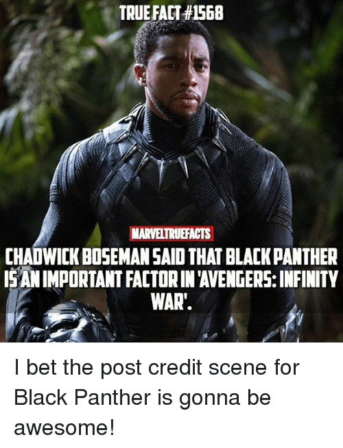 I Bet, Memes, and True: TRUE FACT #1568  MARVELTRUEFACTS  CHADWICK BOSEMANSAID THAT BLACK PANTHER  IS ANIMPORTANT FACTORIN 'AVENGERS: INFINITY  WAR'. I bet the post credit scene for Black Panther is gonna be awesome!