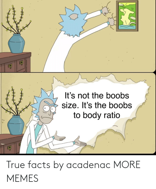 Facts: True facts by acadenac MORE MEMES