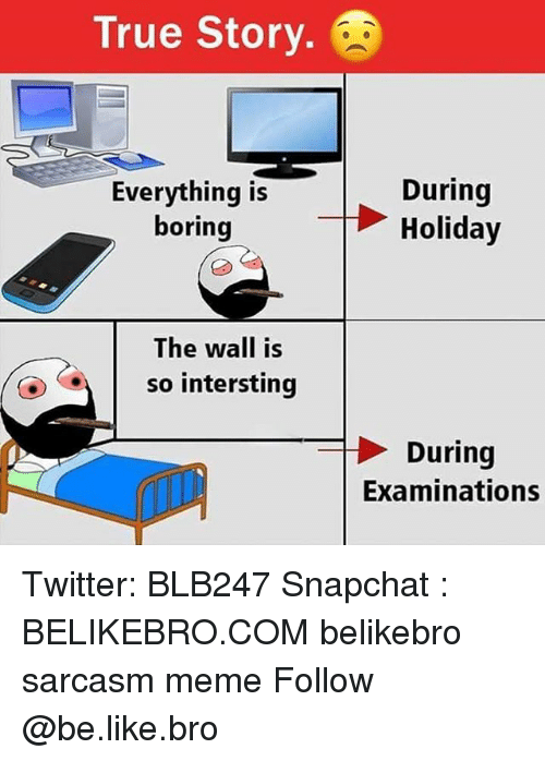 Be Like, Meme, and Memes: True Story.  During  ything isHoliday  boring  The wall is  (0)  so intersting  During  Examinations Twitter: BLB247 Snapchat : BELIKEBRO.COM belikebro sarcasm meme Follow @be.like.bro