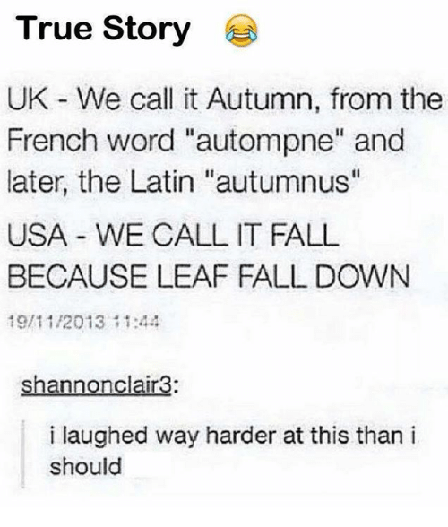 """Fall, Memes, and True: True Story  UK - We call it Autumn, from the  French word """"autompne"""" and  later, the Latin """"autumnus""""  USA WE CALL IT FALL  BECAUSE LEAF FALL DOWN  19/11/2013144  shannonclair3:  i laughed way harder at this than i  should"""