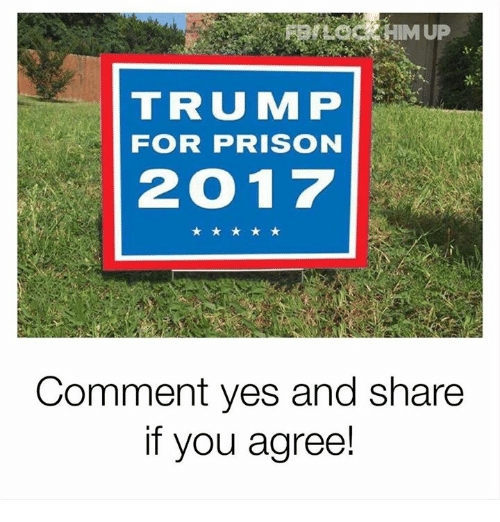 Memes, Prison, and Trump: TRUMP  FOR PRISON  2017  Comment yes and share  if you agree!