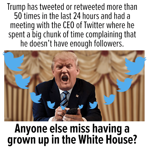 Memes, Twitter, and White House: Trump has tweeted or retweeted more than  50 times in the last 24 hours and had a  meeting with the CEO of Twitter where he  spent a big chunk of time complaining that  he doesn't have enough followers.  Anvone else miss having a  grown up in the White House?