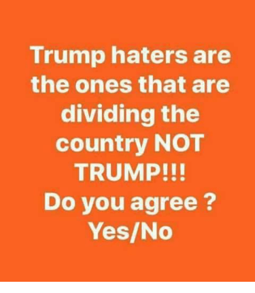 Memes, Trump, and 🤖: Trump haters are  the ones that are  dividing the  country NOT  TRUMP!!!  Do you agree?  Yes/No
